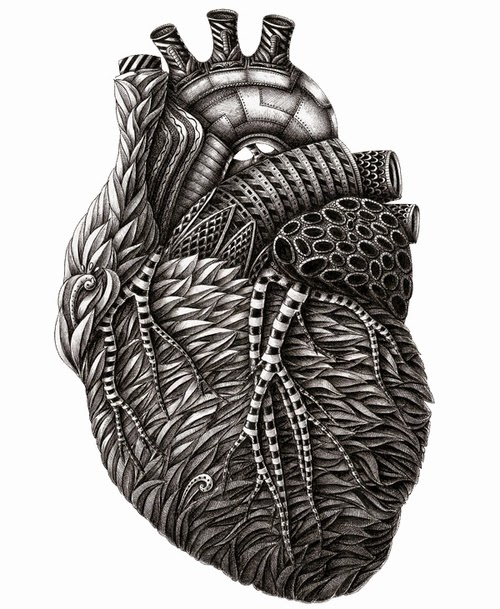 02-The-Heart-Alex-Konahin-Stylised-Anatomy-Intricate-and-Unique-Drawings-www-designstack-co