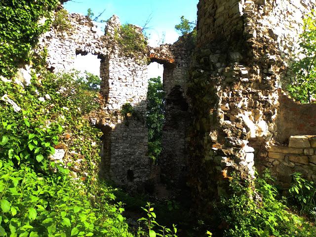 Fragment zamku w Rudnie - maj 2016