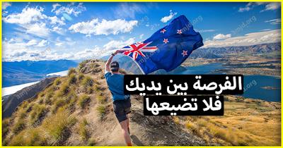 عقد عمل في نيوزيلندا