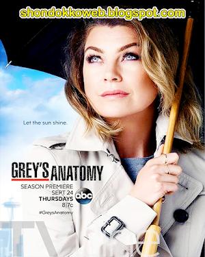 Grey's Anatomy Temporada 16 Capitulos (19/??) Sub Español MEGA