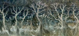 fotografía creativa surrealista abstracta abstracción arena tierra ríos secos