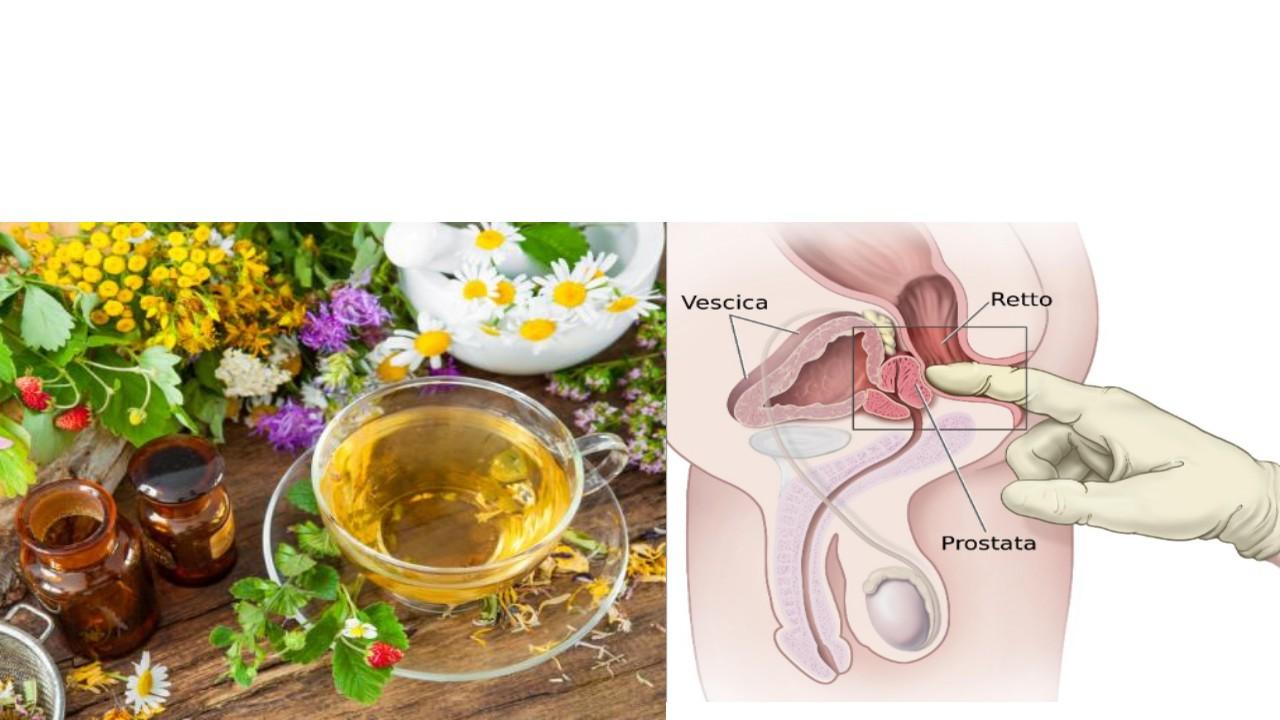 que comer para curar la prostatitis