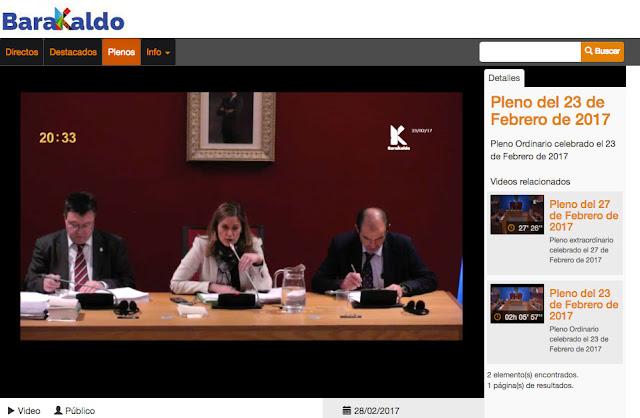 Imagen de la web de transmisión del pleno
