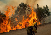 A Firefighter Covers His Face While Battling a Wildfire Near Morgan Hill, CA. (Credit: AP/Noah Berger) Click to Enlarge.