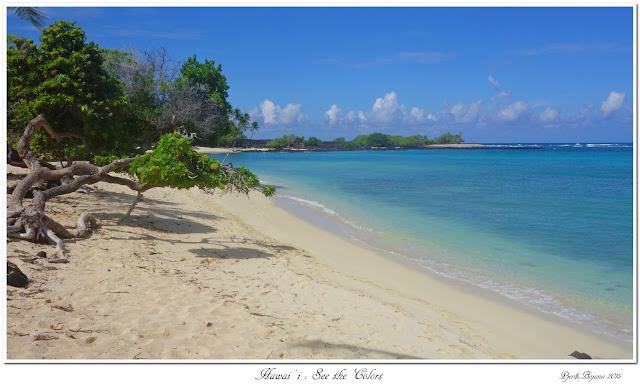 Hawai'i: See the Colors