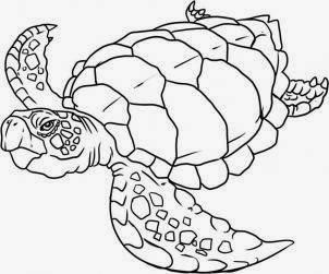 Turtle tattoo stencil