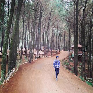 Rute Dan Lokasi Bukit Senyum Cipada Bandung Barat Yang Lagi Hits