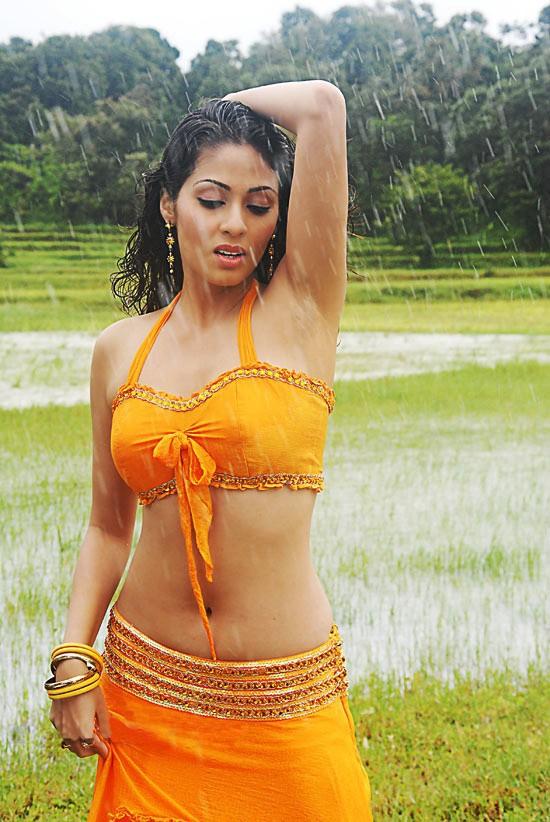 Tamil Actress Sada New Hot Photo Gallery