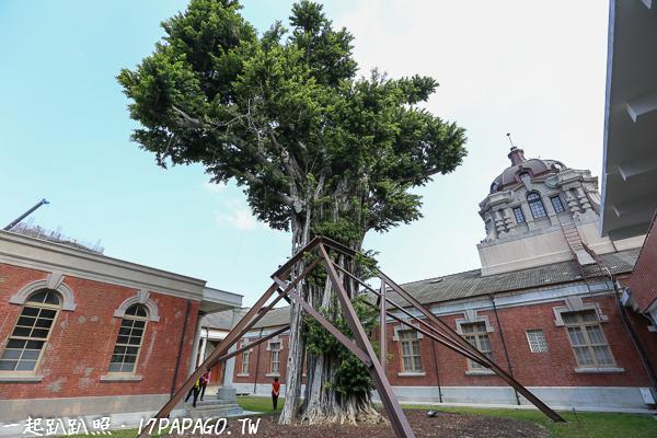 司法博物館內的大榕樹,可以看到華麗宏偉的圓頂