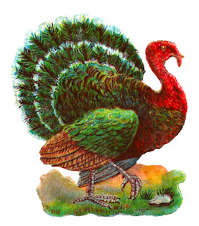 turkey image bird clipart digital Thanksgiving crafting image