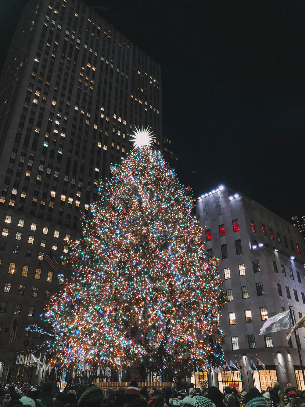 New York City's Biggest Christmas Tree at Rockefeller Center