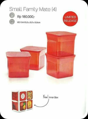 Tupperware Small Family Mate