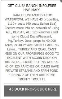 how to find turkeys, where to locate turkeys, tracks