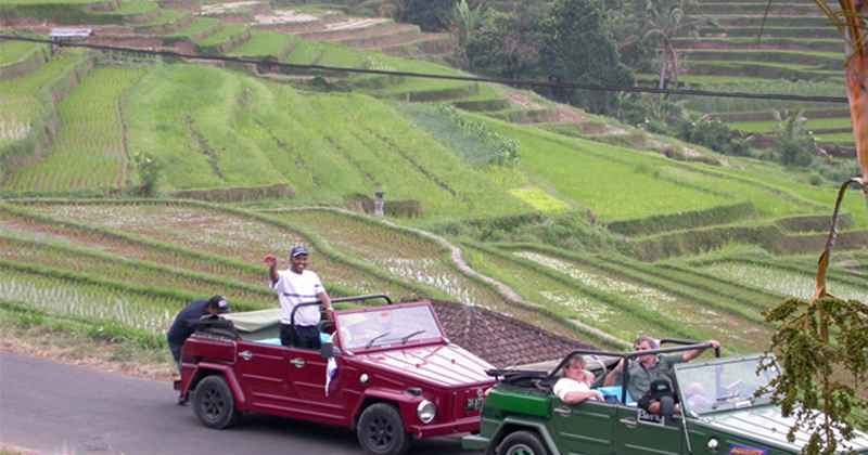 Bali VW Safari Experience - Bali, Activities, Holidays, Tours, Attractions