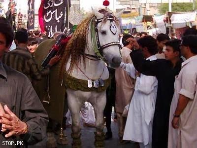 Ya Ali (a.s) aap ki Sarkar: Zuljanah (Murtajiz) - The ...