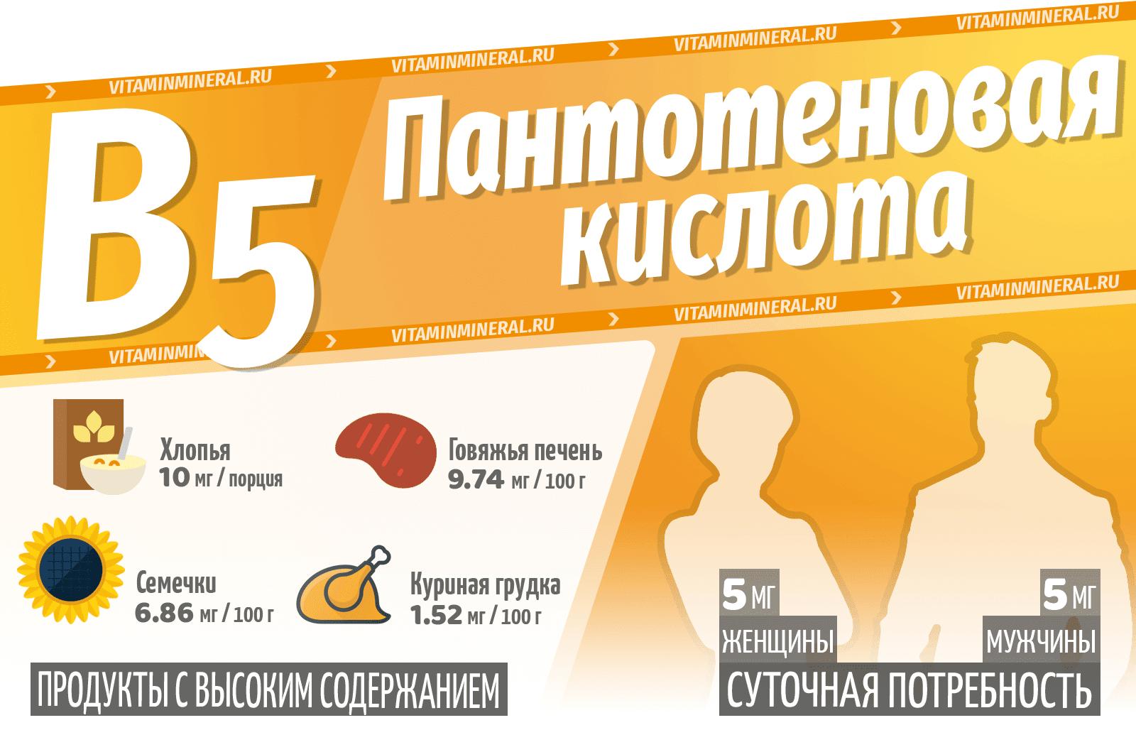 Витамин B5 (Пантотеновая кислота) — инфографика