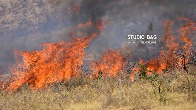 Πυρκαγιά στην είσοδο του χωριού Λάλουκα