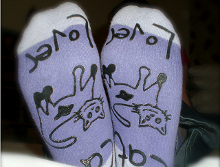 Image: 365:237 Slipper Socks