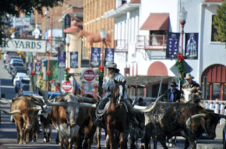 Longhorn cattle and cowhands walking down city street