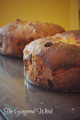 Sourdough Panettone - The Gingered Whisk