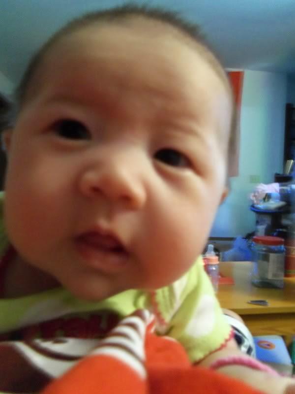 Download gambar bayi ganteng dari korea