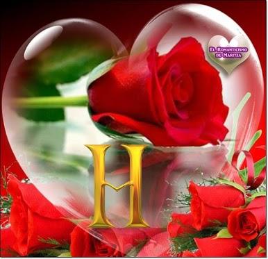 heart and dil ek sath