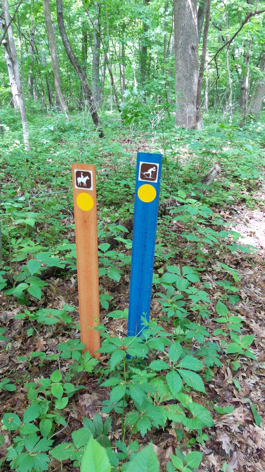 Hike Starved Rock: May 29, 2014 Matthiessen Park