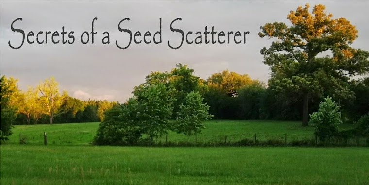 Secrets of a Seed Scatterer