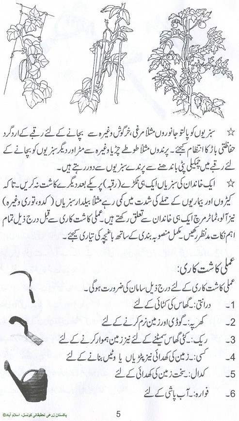 how to grow vegetables fruits kitchen gardening urdu guide rh noonwalqalam blogspot com Young and Old Person Gardening Gardening Group
