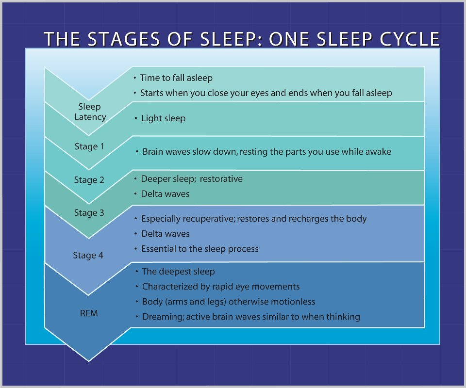 An overview of the four stages of sleep and dreaming