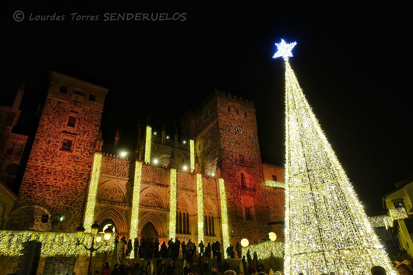 Guadalupe En Navidad La Iluminaci 243 N Del Pueblo M 225 S Bello