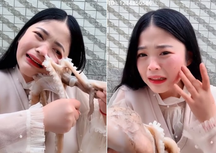 A sweet-looking livestream host getting disfigured by an octopus as she tried to eat it while it was alive.
