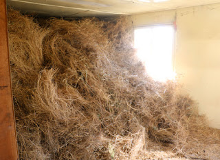 The first load of hay in, filled past the window even