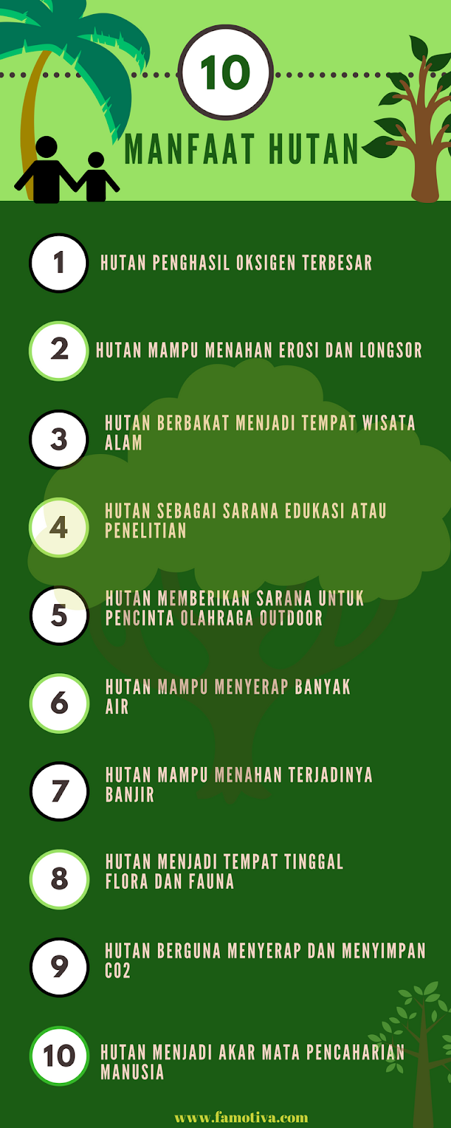 Sebutkan Manfaat Hutan Mangrove : sebutkan, manfaat, hutan, mangrove, Gambar, Hutan, Manfaatnya, Kekinian, Pixabay