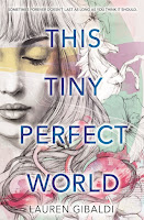 cover of This Tiny Perfect World