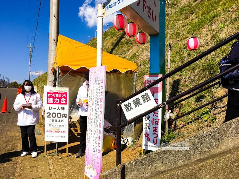 matsuda-sakura-11.jpg