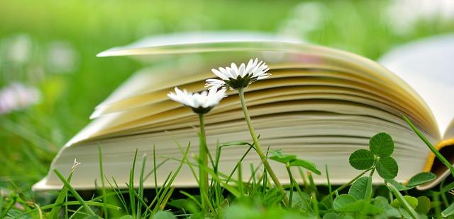 Incentivo a la lectura