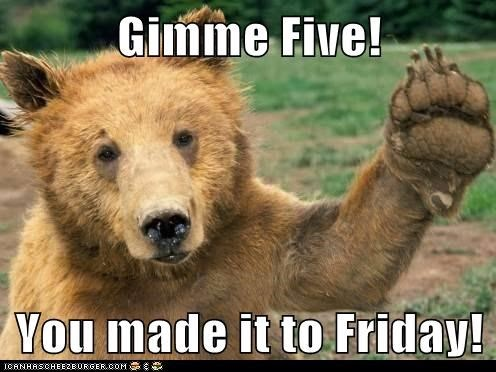 happy friday animal pictures