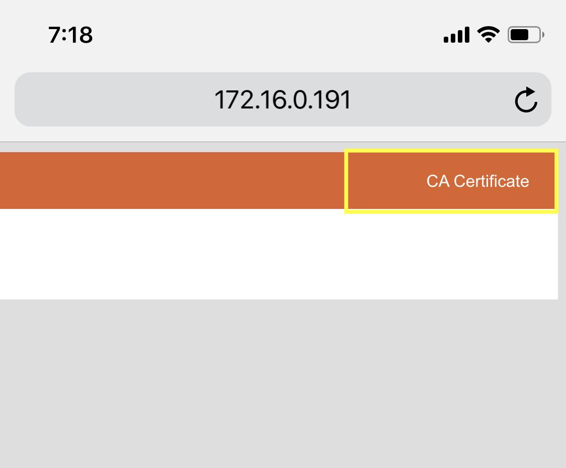 Intercepting iOS applications HTTPS traffic in Burp Suite   The Burp