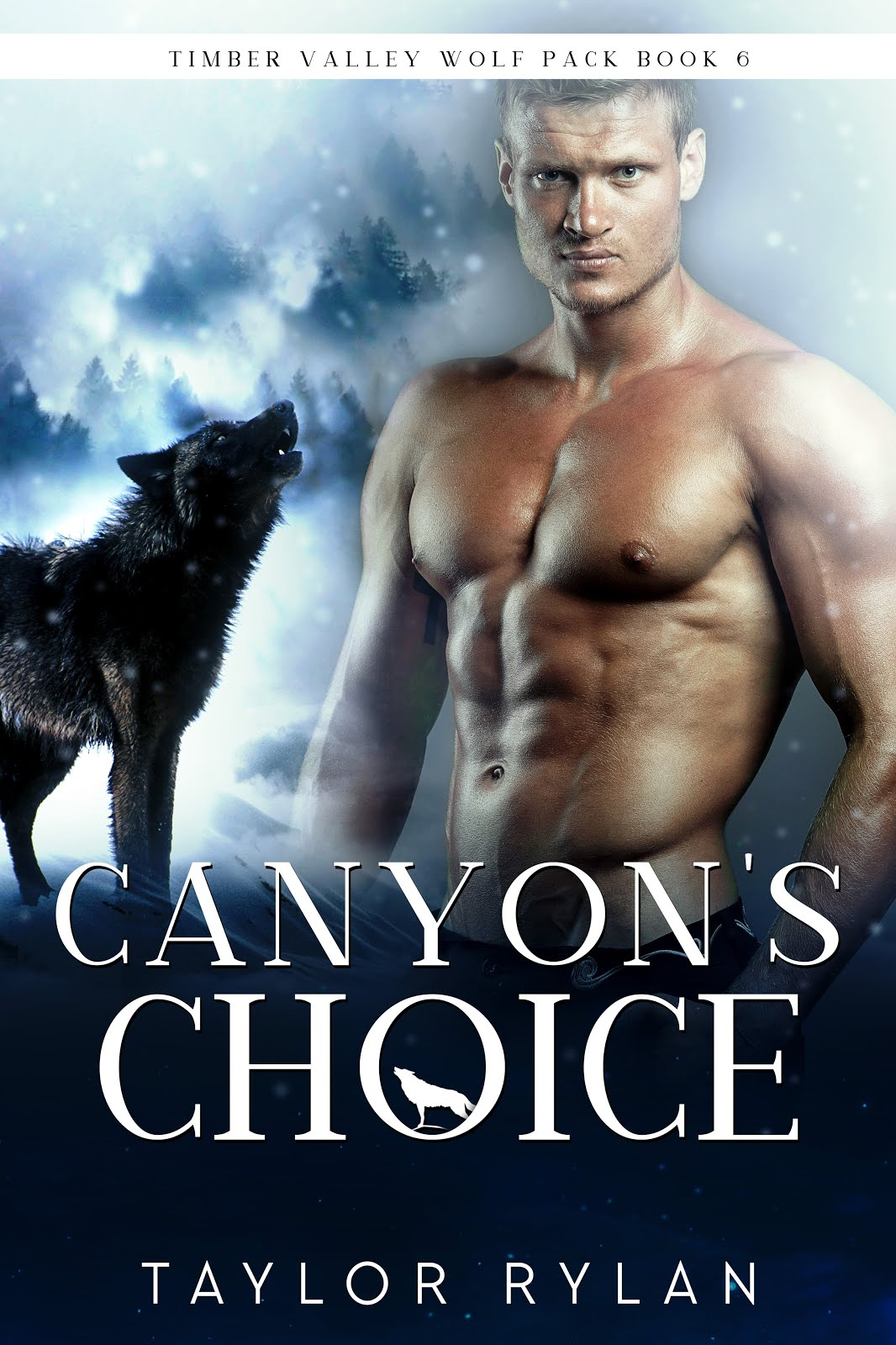 Canyon's Choice by Taylor Rylan