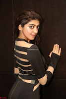 Pranitha Subhash in a skin tight backless brown gown at 64th Jio Filmfare Awards South ~  Exclusive 125.JPG