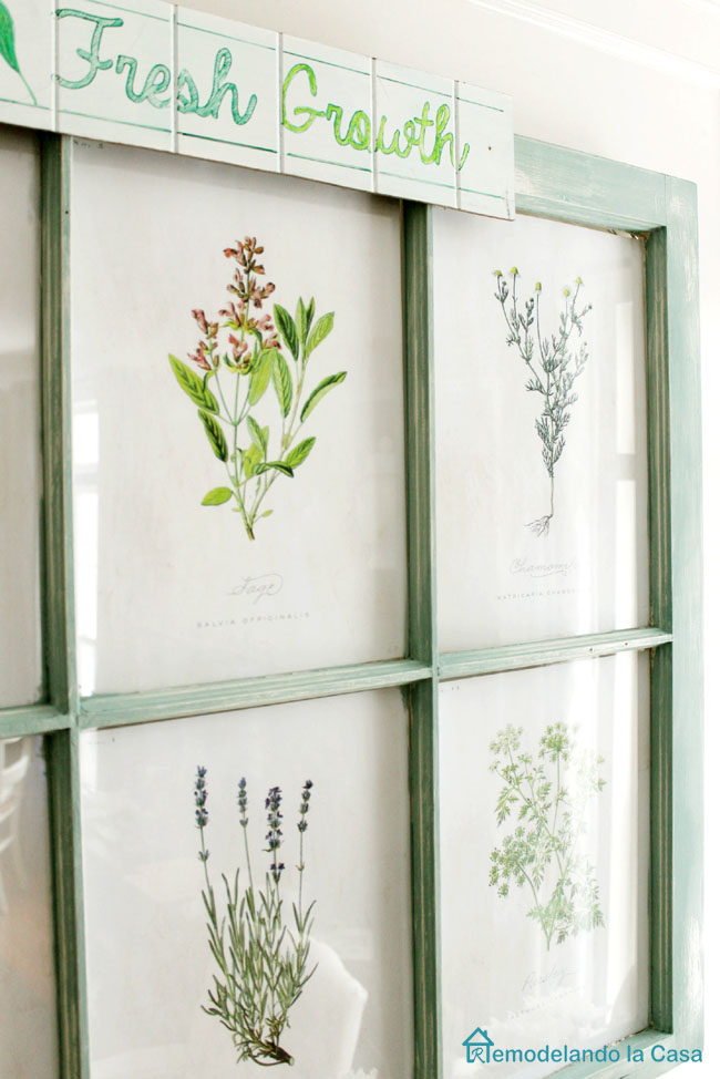 free botanical prints on old window