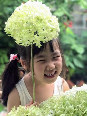 紫陽花ときょーこ