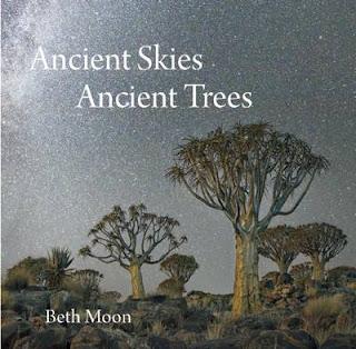 Ancient Skies, Ancient Trees. Beth Moon