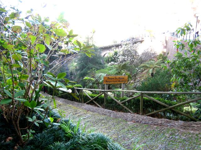 Monte, Madeira