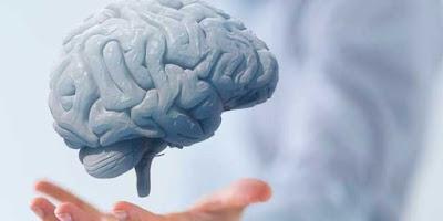 Rejuvenezca su cerebro