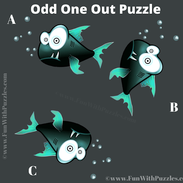 It is spot the different picture riddle in which your challenge is to find the fish which is odd one out.