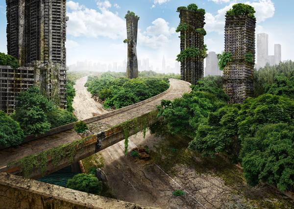 mundo sin humanos puente