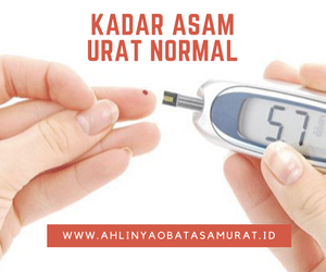 Berapa Kadar Asam Urat Normal