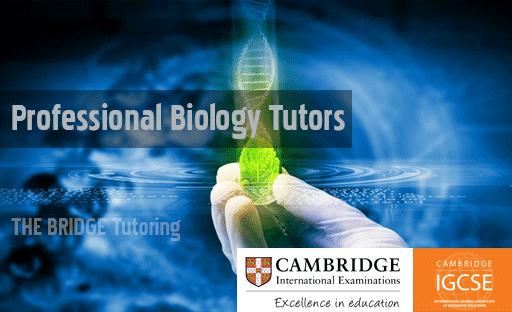 Biology tutor in g-5 sector Islamabad